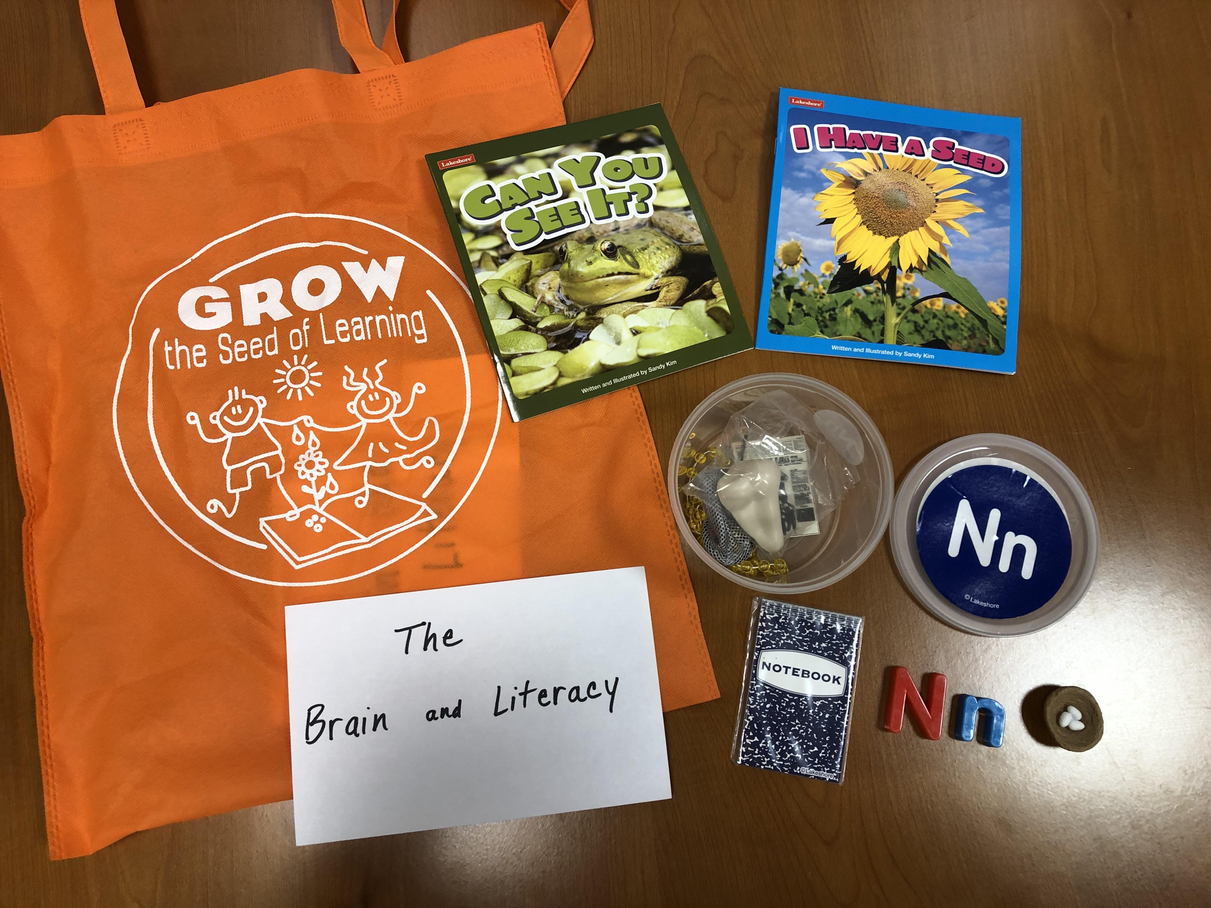 gtsl-brain-and-literacy